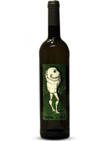 Terras do Avô 2013 - White Wine