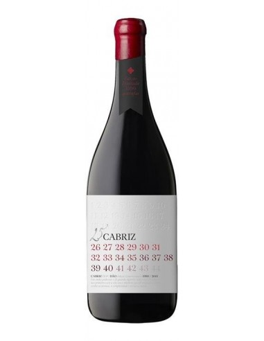 Cabriz 25 Anos - Red Wine