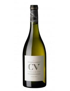 CV Curriculum Vitae 2016 - Vin Blanc