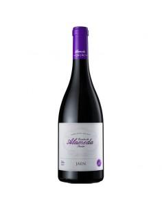 Quinta da Alameda Jaen 2013 - Red Wine