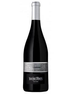 100 Hectares Superior - Vino Tinto