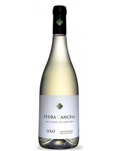 Pedra Cancela Seleção Enólogo 2017 - White Wine