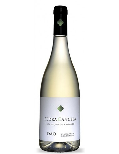 Pedra Cancela Seleção Enólogo 2017 - Vinho Branco
