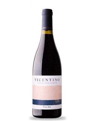 Vicentino Colheita 2015  - Red Wine