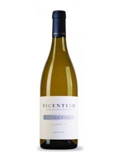 Vicentino Reserva Sauvignon Blanc 2017 - Vino Blanco