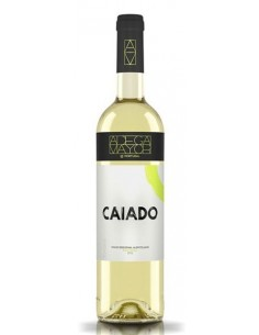 Adega Mayor Caiado - White Wine