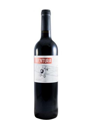 Aventura Susana Esteban - Red Wine