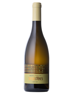 100 Hectares Reserva 2019 - Vino Blanco